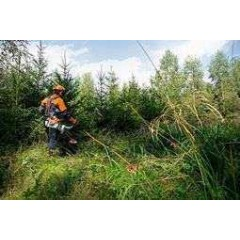 Petrol Grass Trimmers - Professional